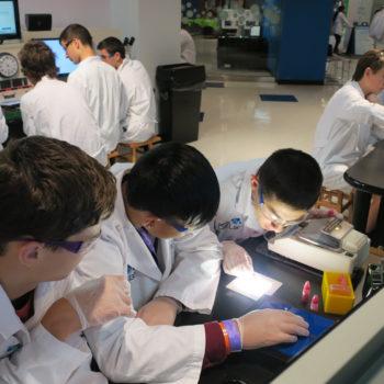 DeBakey Cell Lab